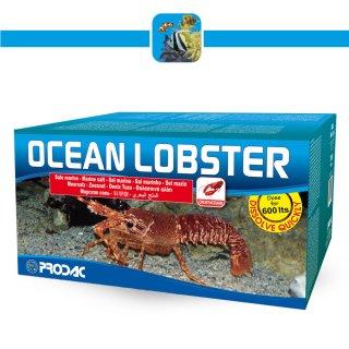 Prodac Ocea Lobster Sale Marino Perfetto per Aragoste Crostacei STER 600 lt