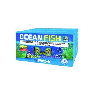OCEANFISH 600 LT