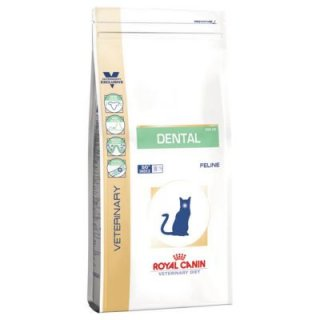 Dental S/O gatto Royal Canin 1,5 kg