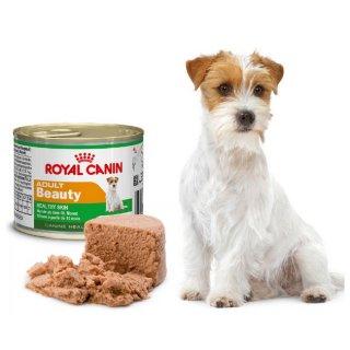 Mini Adult Beauty cane Royal Canin 195 gr