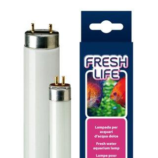 FRESHLIFE 15W LAMPADA T8