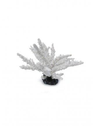HAQUOSS WHITE ACROPORA - 20,5x20,16h cm
