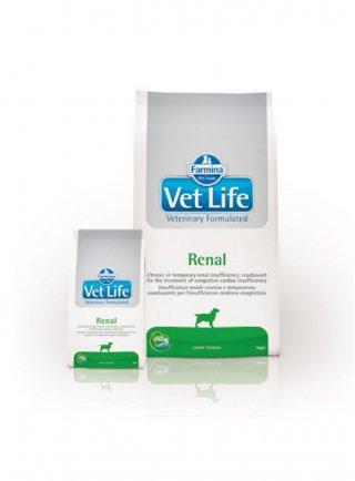 Farmina vet life dog Renal 12kg