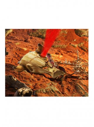 Decorazione nascondiglio teschio bufalo + faretto colorato rosso