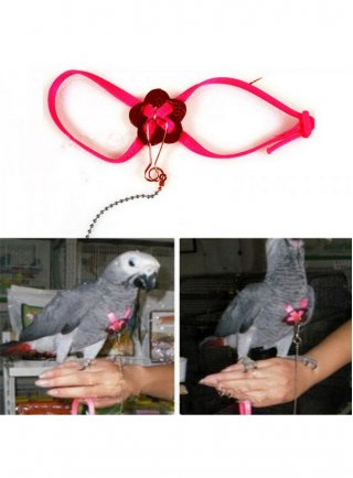 Pettorina per pappagalli e parrocchetti