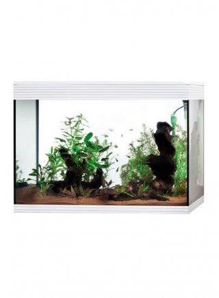 Acquario Askoll Pure XL High Cube LED