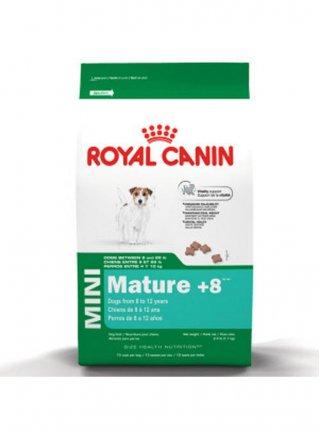Mini Mature cane Royal Canin