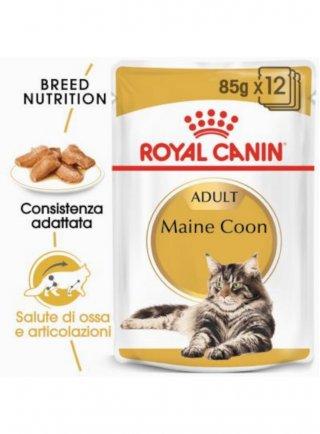 Maine Coon buste Royal Canin 12x85 gr