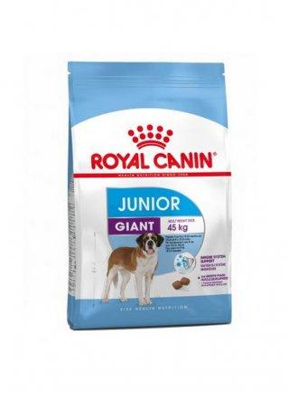 Giant junior cane Royal Canin
