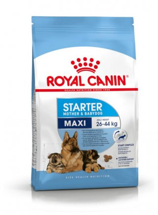 Maxi Starter Mother & Babydog Royal Canin