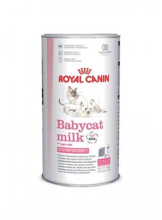 First Age Babycat Milk gatto Royal Canin 300 gr