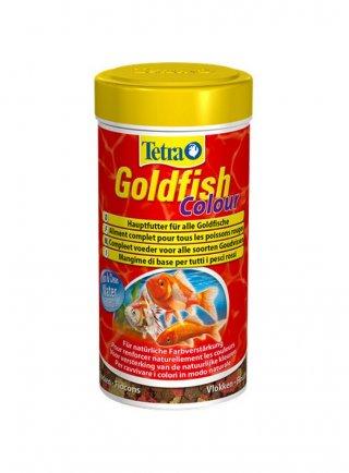 Tetra goldfish colour mangime pesci rossi colorazione