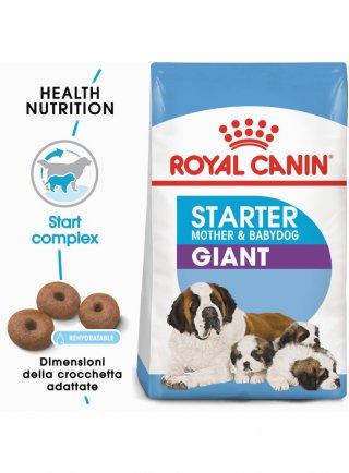 Giant starter mother & babydog Royal canin