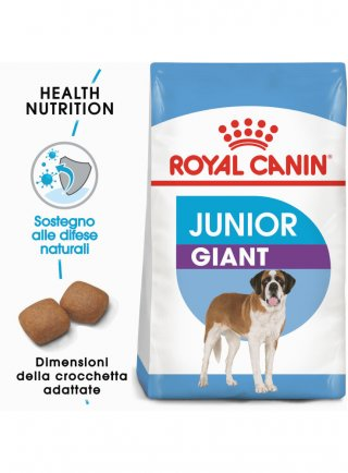 Giant junior cane Royal Canin