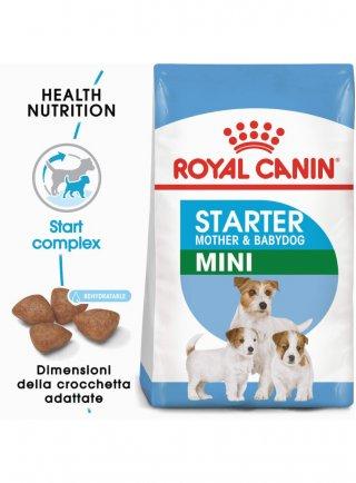 Royal Canin mini starter Mother e babydog