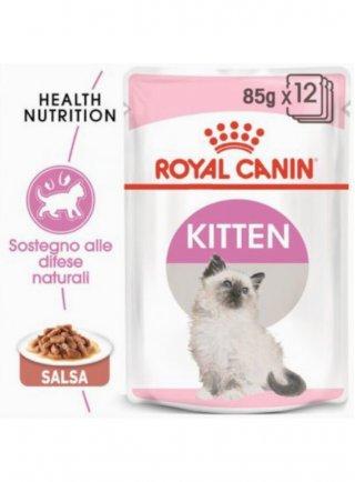Kitten buste Royal Canin
