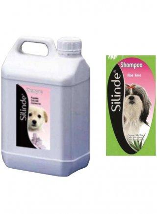 Shampoo Aloe Vera 5Lt