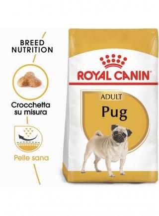 Carlino PUG Adult Royal Canin