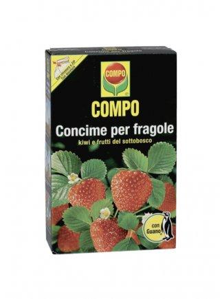 COMPO FRAGOLE KG.1