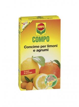COMPO LIMONI E AGRUMI GR.500