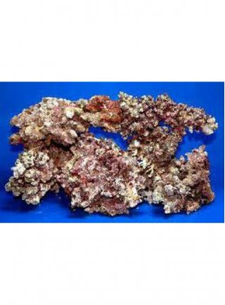 Roccia Viva Corallina - 1 kilo