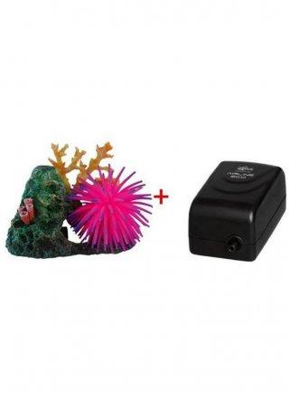 Haquoss decorazione marine rock con areatore