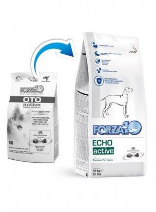 Forza 10 Echo Active (oto active)