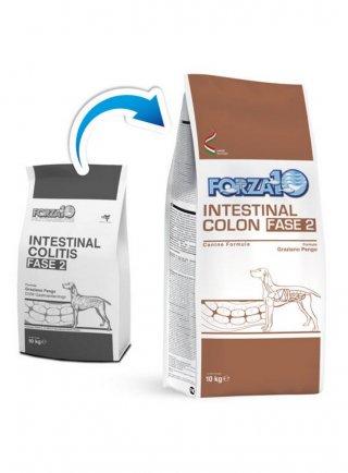 Forza 10 Intestinal Colon (intestinal colitis) Fase 2 per cani