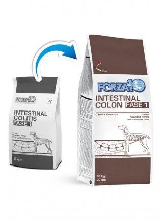 Forza 10 Intestinal Colon (intestinal colitis) Fase 1 per cani
