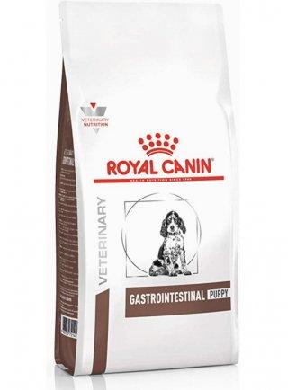 Gastro intestinal puppy cane Royal Canin