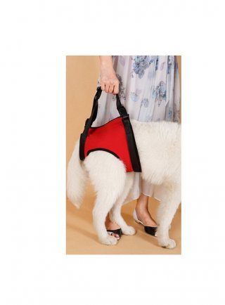 Imbracatura di supporto per cani Walking Aid Hind Legs