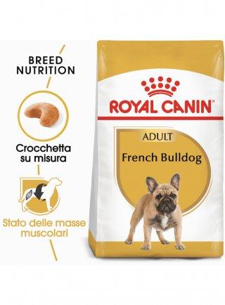 French Bulldog Adult Royal Canin