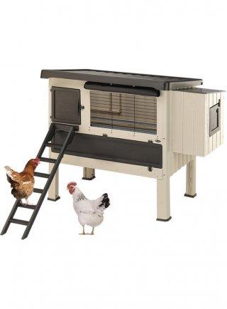 Gabbia casetta per galline Ferplast HAPPY FARM 120 pollaio in plastica beige