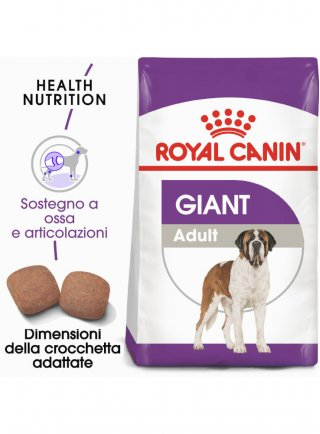 Giant Adult cane Royal Canin