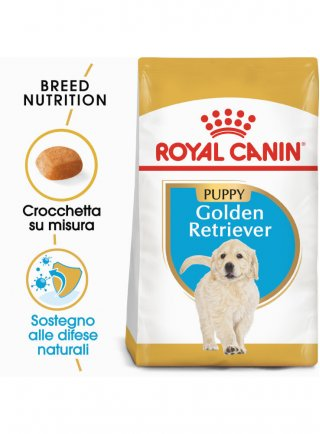 Golden Retriever Puppy Royal Canin