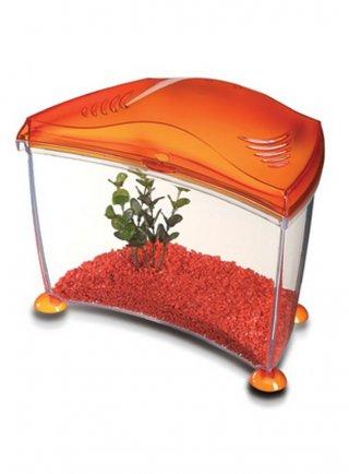 ACQUARIO GOLDFISH 10LT MARINA (colore arancione)