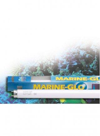 Lampada marine glo per acquario marino