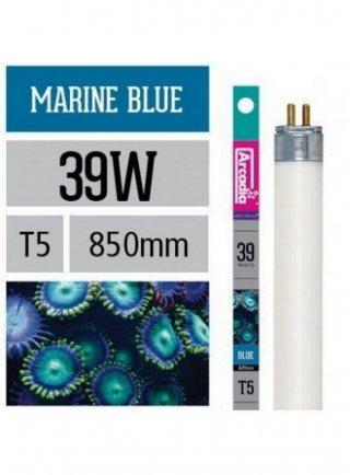 Arcadia Neon Trpical Lamp T8 36W  luce per acquario marino,esalta i coralli
