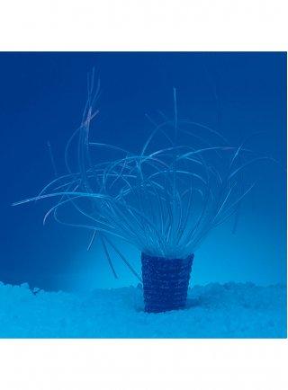 Decorazione anemone neon bianco azoo AZ27203