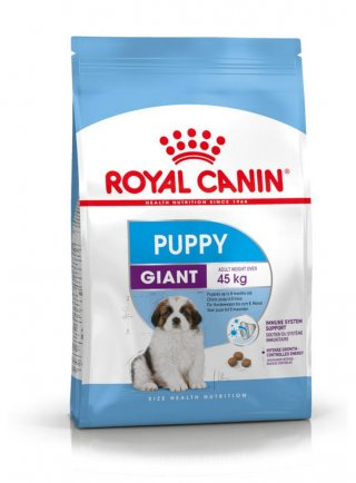 Giant Puppy cane Royal Canin