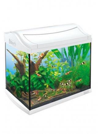 Acquario Tetra aqua art Led 30 Lt Bianco
