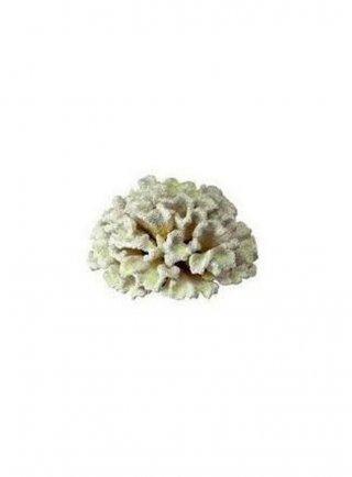 Corallo in resina bianco con sfumature gialle Ferplast