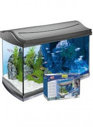 Acquario Tetra Aqua art led