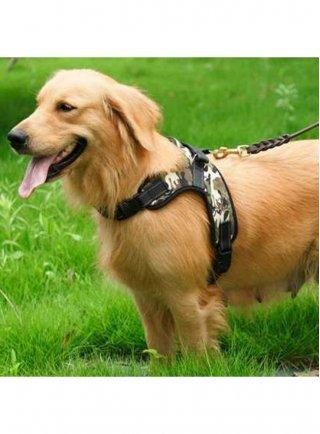 Pettorina per cani catarifrangente militare Pettribe