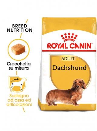 Bassotti DACHSHUND Adult Royal Canin