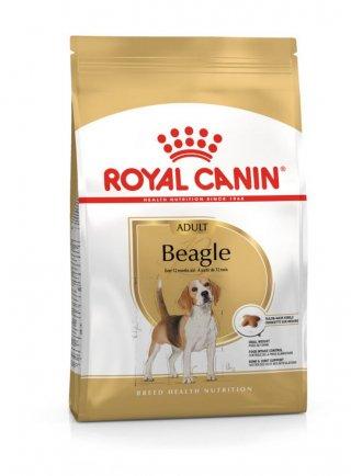 Beagle Adult Royal Canin