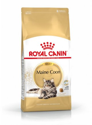 Maine Coon Royal Canin