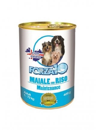Forza 10 cane adult mantenimento 400 gr