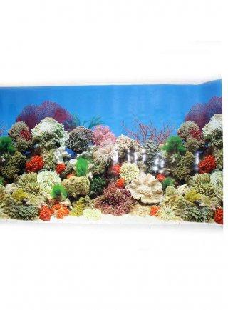 Sfondo per acquario coralli SAD 2