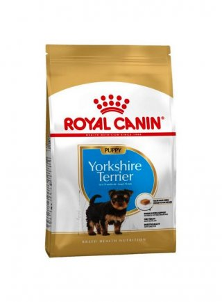 Yorkshire Terrier Puppy Royal Canin